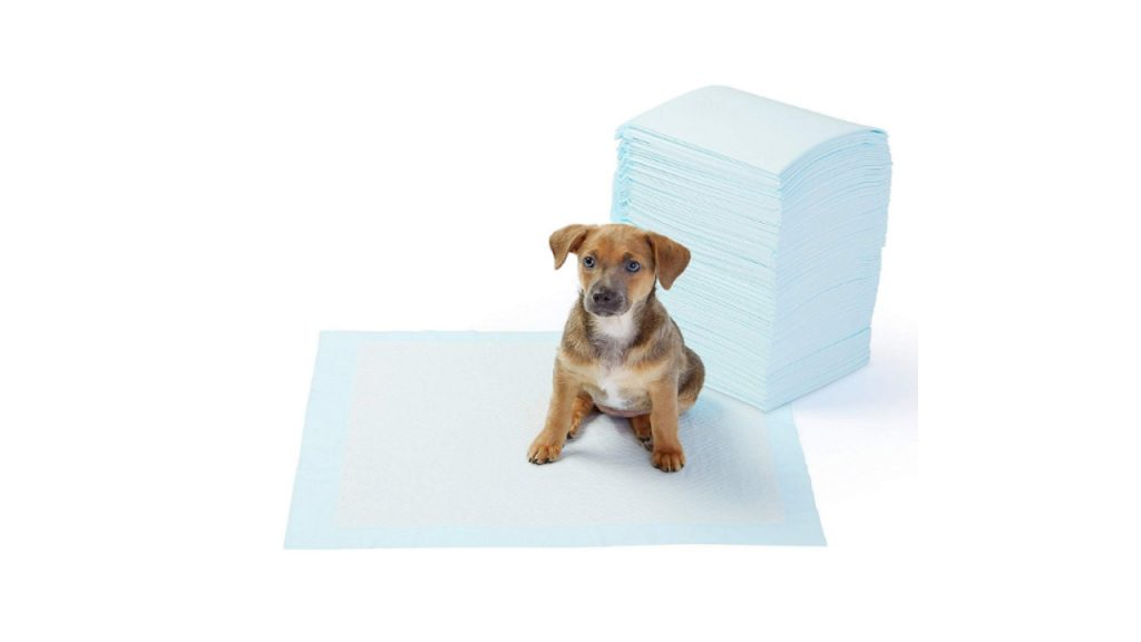 AmazonBasics Dog and Puppy Potty Training Pads