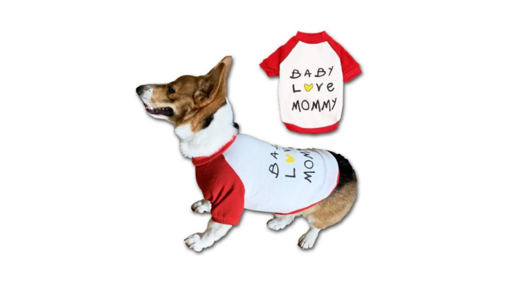 blank dog shirts dresses for dog hot dog shirts dog graduation cap dog sweaters walmart