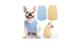 hot dog shirts dog graduation cap dog sweaters walmart dog sweatshirts cute dog clothes