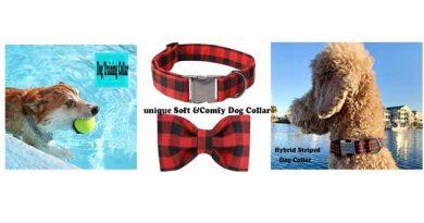 Bark-Dog-Collar