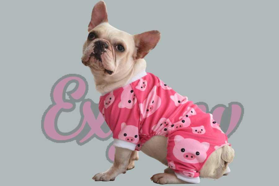 Dog Pajamas Cute Clothes