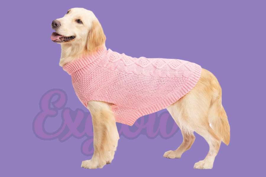 Dog Vest Waterproof Pet Jacket